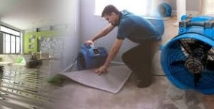 Auckland water damage repair company