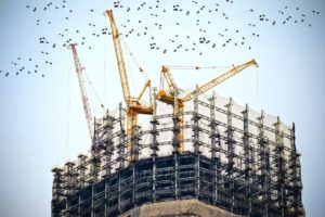 Auckland Construction contracts lawyer